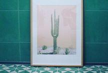 Cacti prints