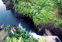 Cliff Diving GIFs