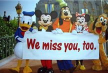 Disney World - The Happiest Place in the World