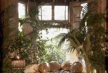 Jungle theme interior