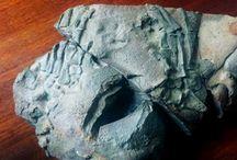 Ancient Origins Articles