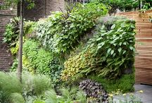gardens & gardening