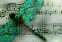Vážky - Dragonfly