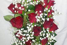 Vörös rózsa...