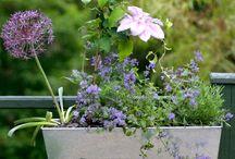 jardinniere