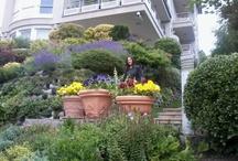 Garden reinforcing wall