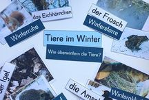Tiere im Winter und Wald