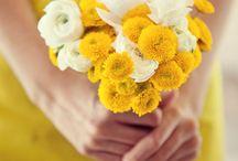 Blomsoorte