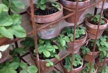 Reo vert graden wall / Outdoor kitchen