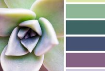 Colour Palete / Beautiful colour combinations