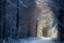 Lieblingsorte und -räume
