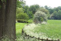 Gardens,that i like