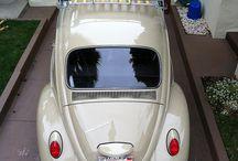 '67 VW Kewer / Studentedae en Hoekwil vakansies