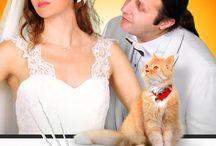 Kedi Özledi | Afiş / Kedi Özledi Afiş