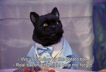 cat - the revelation