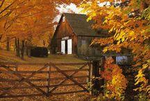 Autumn, Thanksgiving, and Halloween
