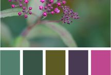 värejä colours