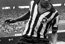 Botafogo / Paixão