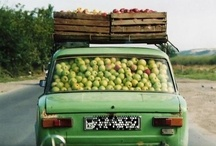 FruitMobiles  / by Edible Arrangements