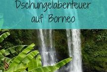 Borneo / Travel inspirations for our next trips
