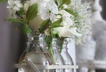 Flowers / Love pretty flowers