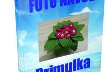 primulky