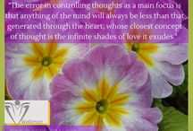 Wellsmart Wisdom Quotes / Words of wisdom and original photography from Dr. Coleman's musings and world travels.