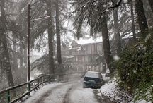 Choos best Delhi Shimla Manali Tours with Tour Operators In Shimla / The honeymoon packages are designed in such a way that if you buy one you will not have to worry about booking   tickets or finding out the best, luxurious resorts. The travel agents or tour operators are very efficient.   They know which hotels and restaurants offer best services.