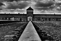 olocausto  Auschwitz Birkenau