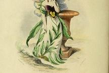 цветок женьщина