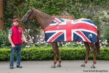 Those we have lost / Racehorses,famous comp horses that are no longer with us....so sad