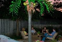 create a tropical paradise / by Cheryl Yacovoni