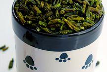 Healthy Dawg / Ideas for raw/healthier dog food diet