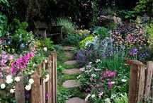 Home - Cottage Garden / Ideas and tips on how to achieve a cottage garden