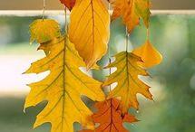 Decorazioni - autunno