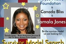 Survivor Model Search