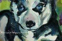 Siberian Husky Boo-Ya! / Discover the amazing Siberian Husky with facts, factoids and trivia