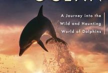 Knowledge is Power / dolphin & whale information