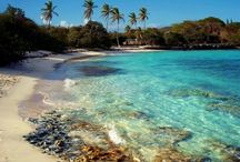 Spring break 2k15- U.S. Virgin Islands / Beach beach and more beach  / by Kristen Wilson