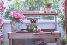 Greenhouses & Potting Areas / by Sophia Luc