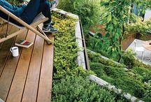 Garden + Roof Garden
