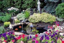 garden talk / by Living Direct