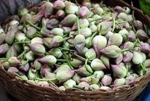 Pak Khlong Talat a.k.a. Bangkok's flower market