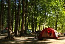 Camping/Outdoors / by Kelly Moran