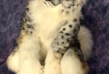 Best Furries
