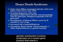 Glomerulonephritis / Videos about glomerular diseases / by Nephrology On-Demand