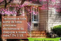 Salmos & Provérbios.