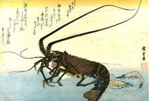 Japon : Ando Hiroshige (1797-1858)