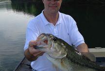Fish I have caught