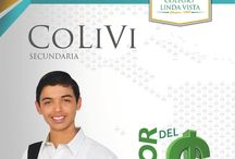 Costos y descuentos COLIVI y ULV / Entérate de la colegiatura del colegio Linda Vista y de cada una de nuestras licenciaturas